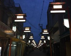 街路灯の導入実績